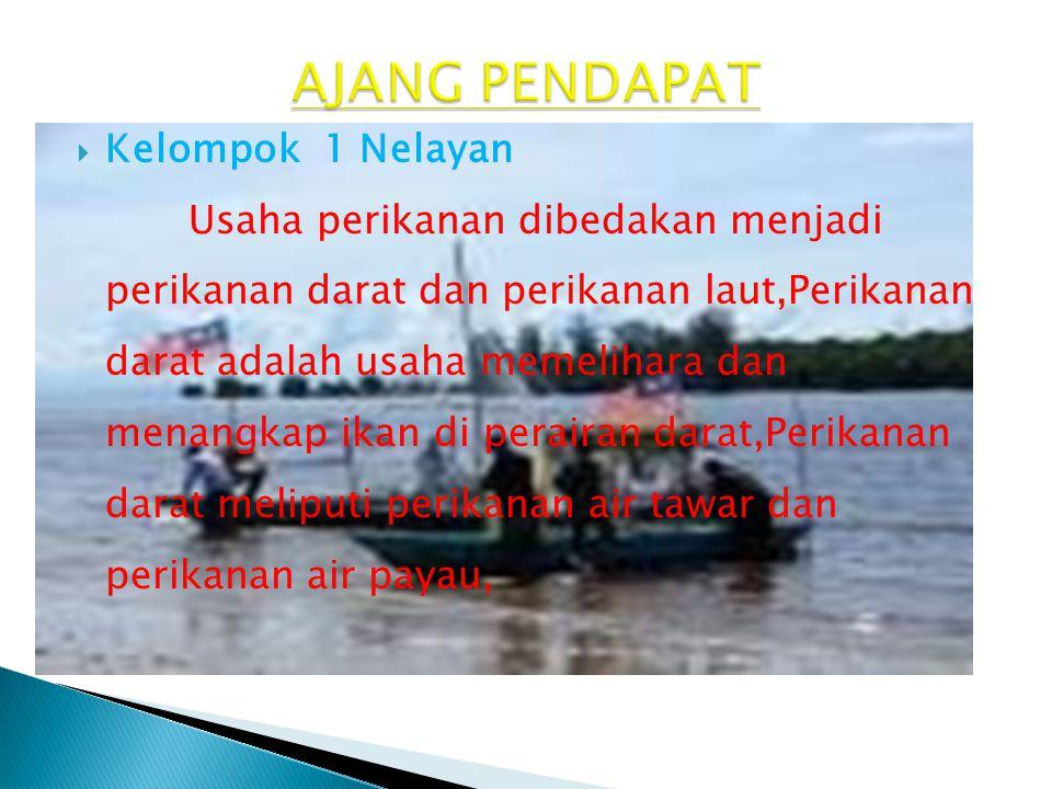 AJANG PENDAPAT Kelompok 1 Nelayan