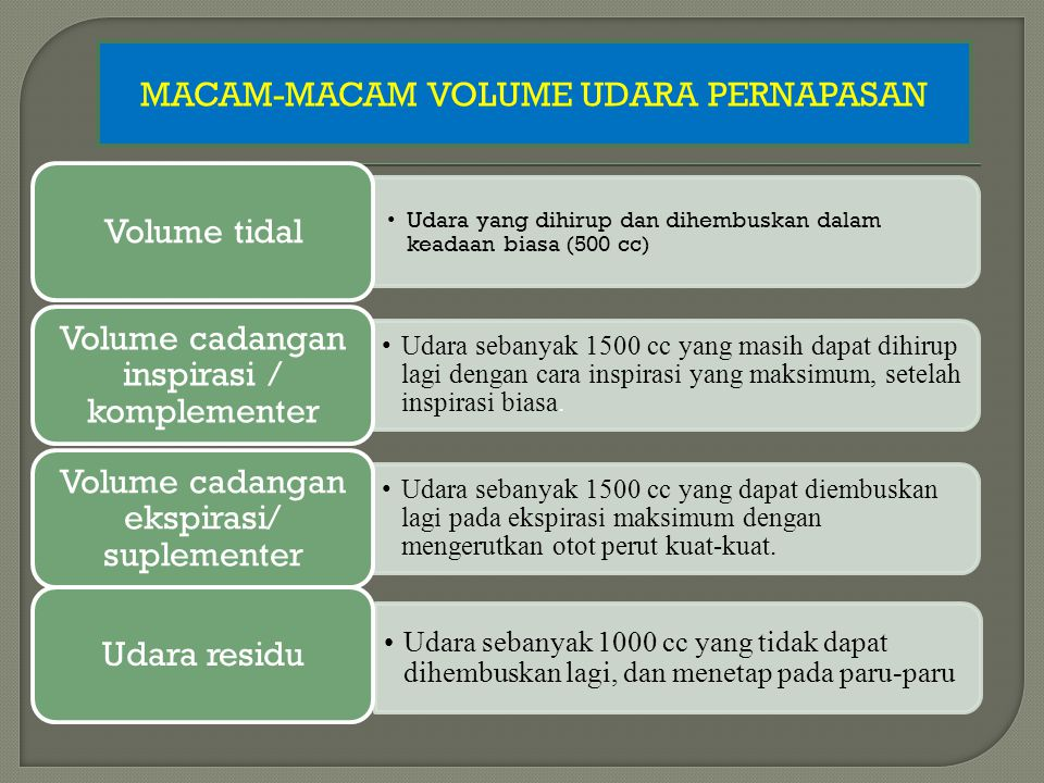 MACAM-MACAM VOLUME UDARA PERNAPASAN Volume tidal