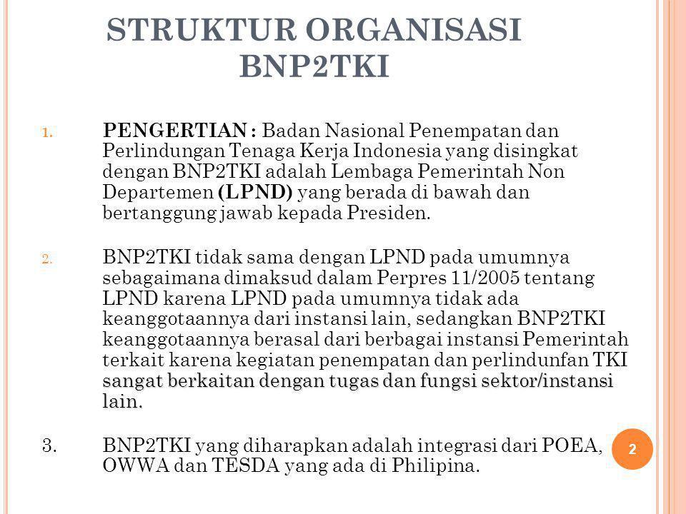 STRUKTUR ORGANISASI BNP2TKI