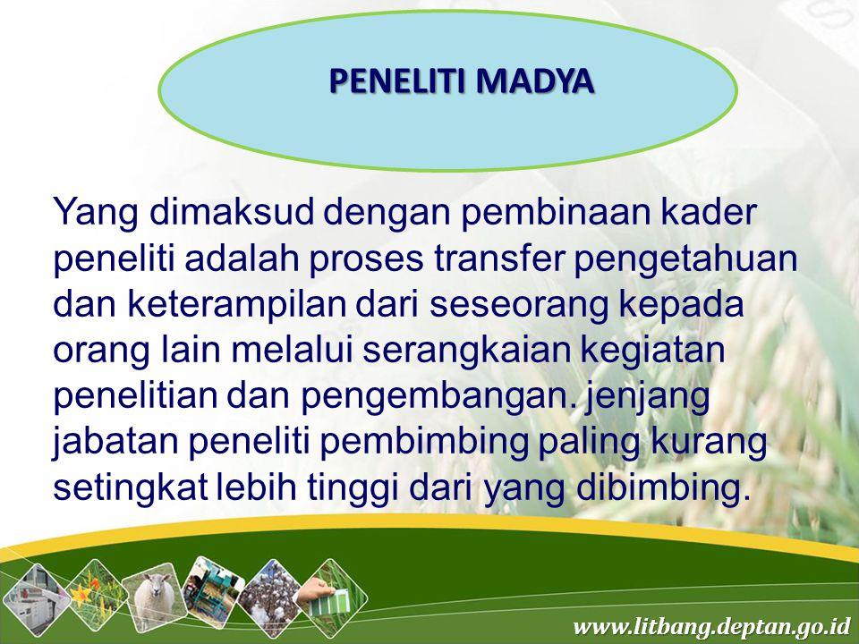 PENELITI MADYA