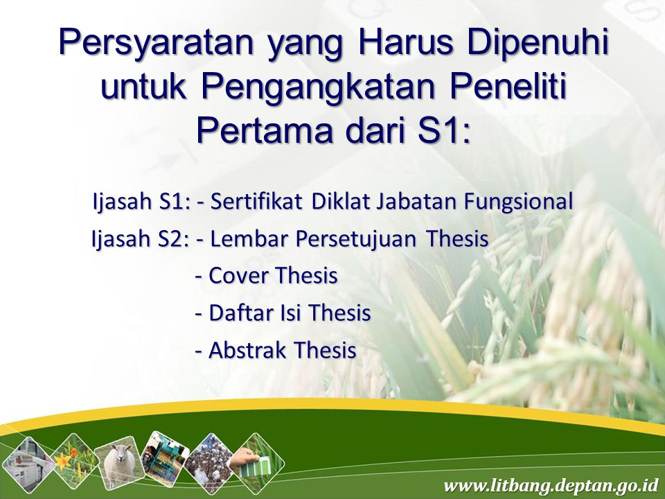 Ijasah S1: - Sertifikat Diklat Jabatan Fungsional