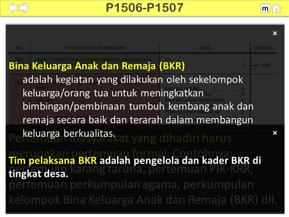P1506-P1507 m. Bina Keluarga Anak dan Remaja (BKR)