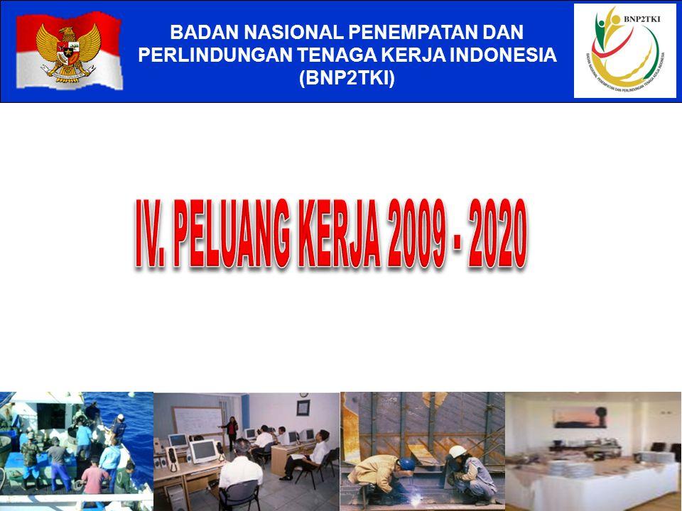 IV. PELUANG KERJA 2009 - 2020 BADAN NASIONAL PENEMPATAN DAN