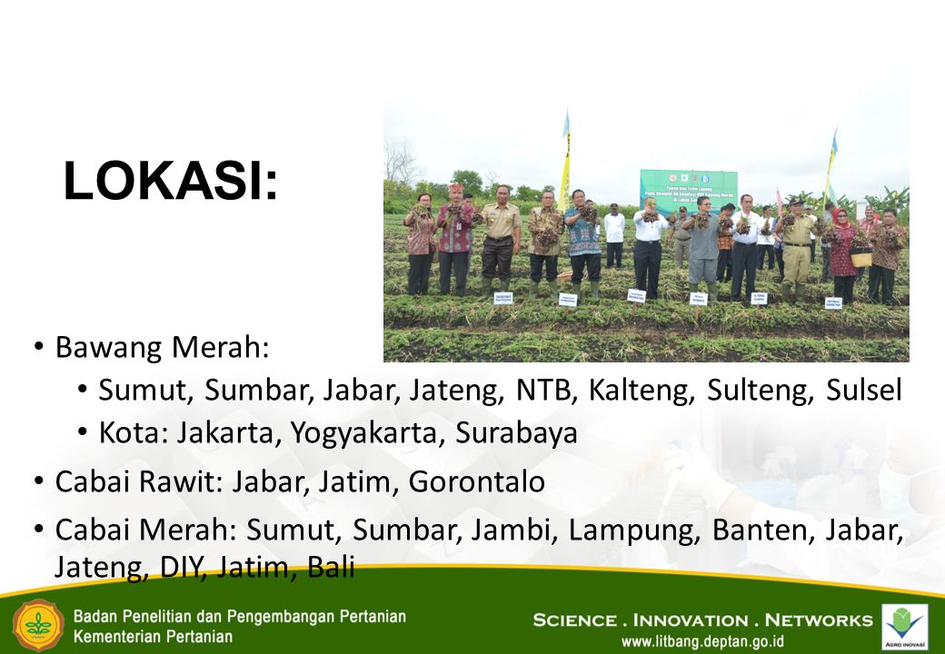 LOKASI: Bawang Merah: Sumut, Sumbar, Jabar, Jateng, NTB, Kalteng, Sulteng, Sulsel. Kota: Jakarta, Yogyakarta, Surabaya.