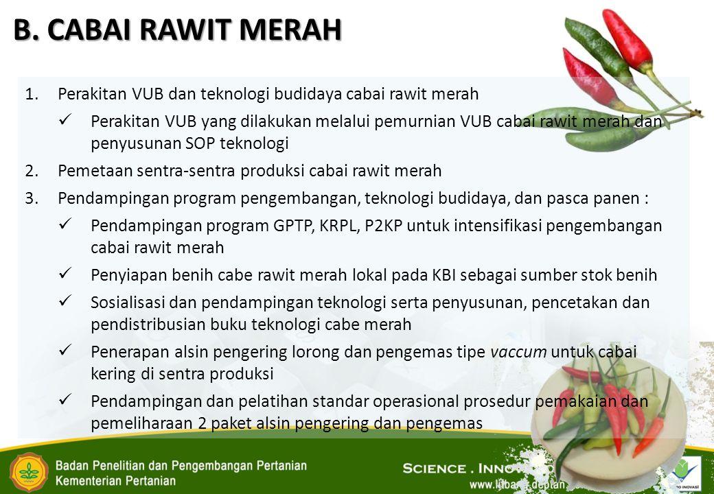 B. CABAI RAWIT MERAH Perakitan VUB dan teknologi budidaya cabai rawit merah.