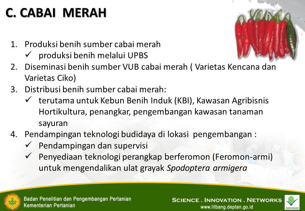 C. CABAI MERAH Produksi benih sumber cabai merah
