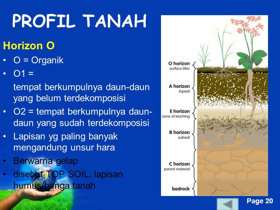 PROFIL TANAH Horizon O O = Organik O1 =