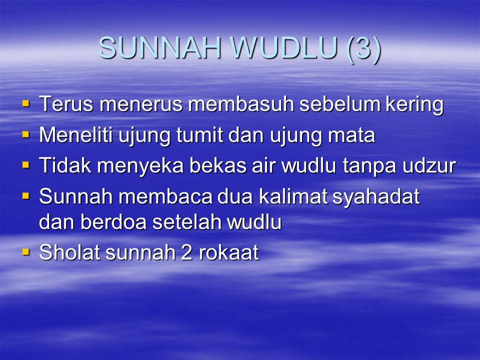 SUNNAH WUDLU (3) Terus menerus membasuh sebelum kering