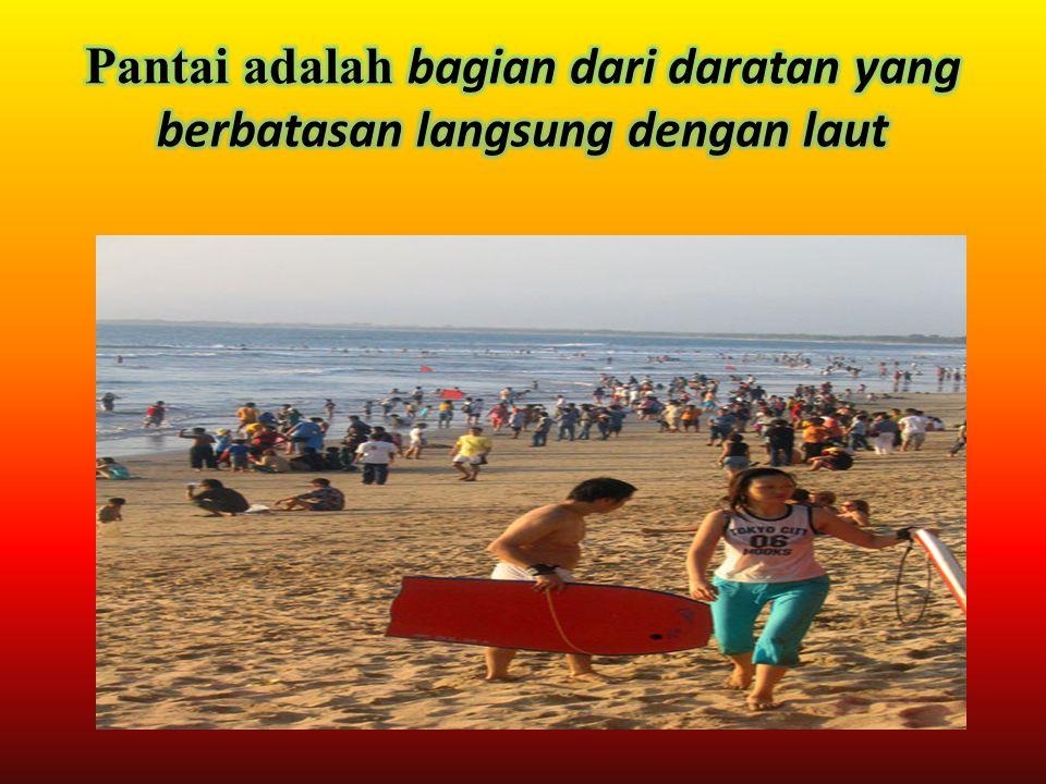 Pantai adalah bagian dari daratan yang berbatasan langsung dengan laut