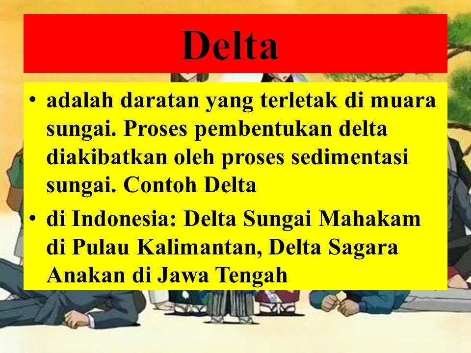 Delta adalah daratan yang terletak di muara sungai. Proses pembentukan delta diakibatkan oleh proses sedimentasi sungai. Contoh Delta.