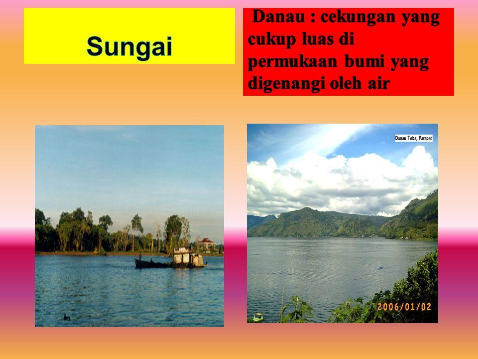 Sungai Danau : cekungan yang cukup luas di permukaan bumi yang digenangi oleh air
