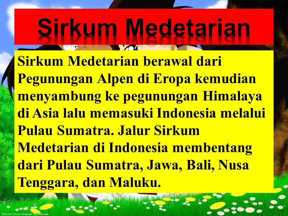 Sirkum Medetarian
