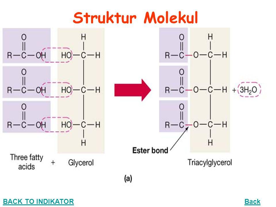 Struktur Molekul BACK TO INDIKATOR Back