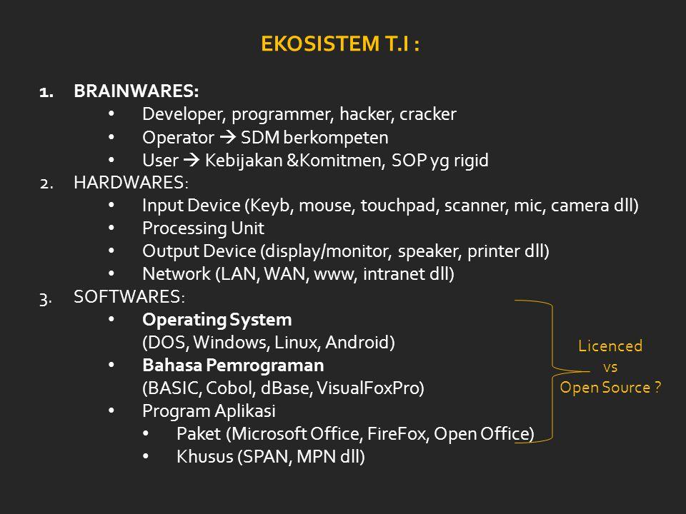 EKOSISTEM T.I : BRAINWARES: Developer, programmer, hacker, cracker