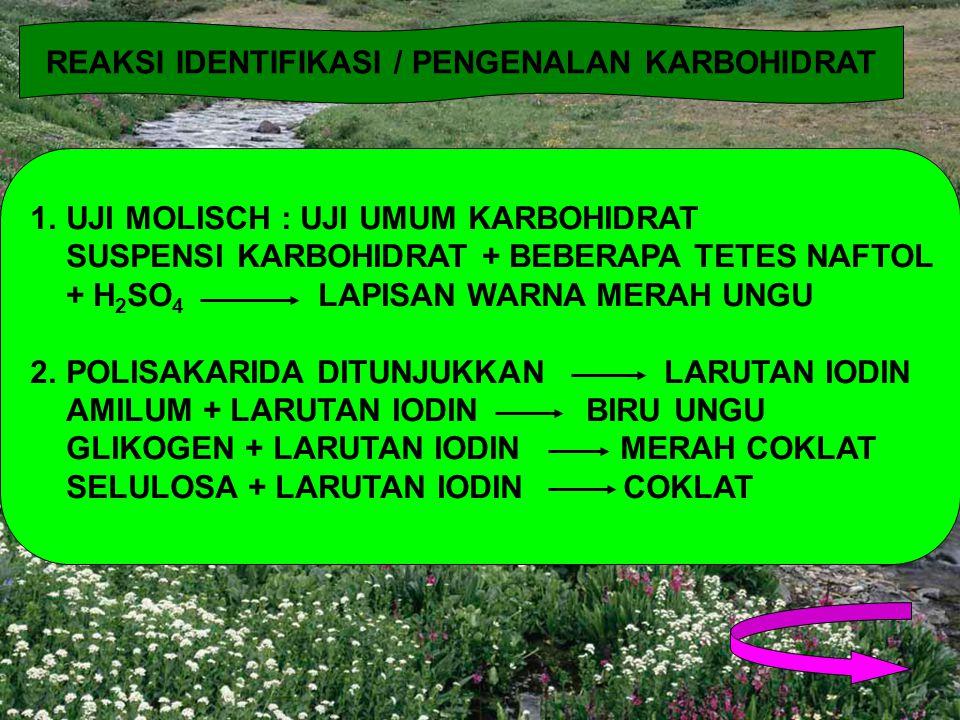 REAKSI IDENTIFIKASI / PENGENALAN KARBOHIDRAT
