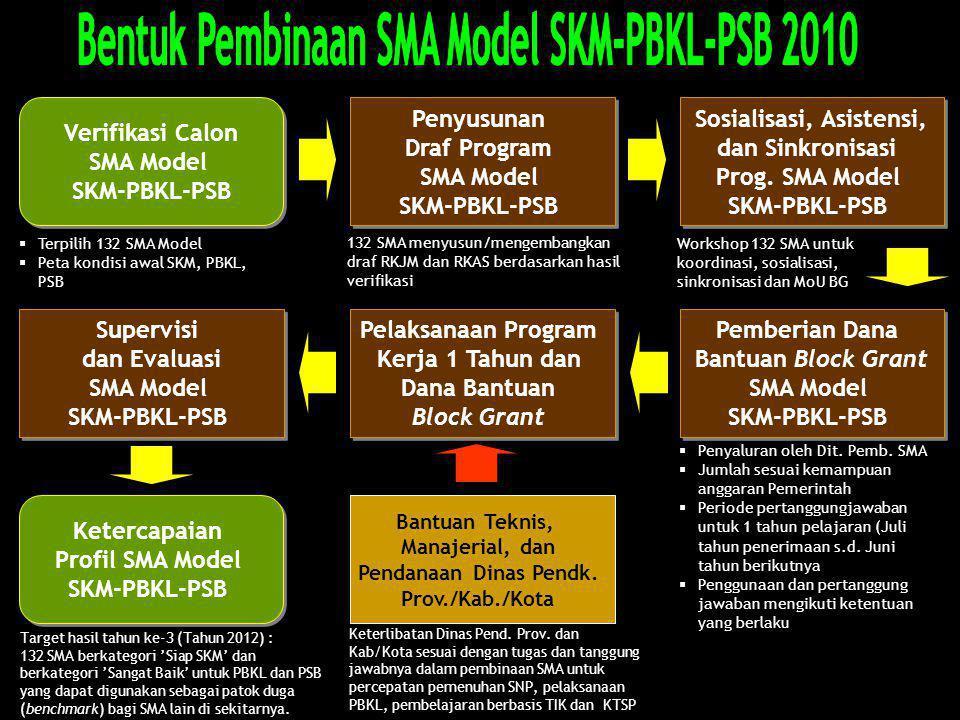 Bentuk Pembinaan SMA Model SKM-PBKL-PSB 2010 Sosialisasi, Asistensi,