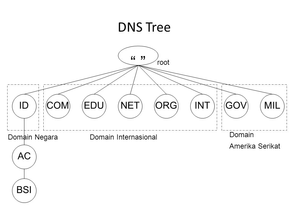 DNS Tree ID COM EDU NET ORG INT GOV MIL AC BSI root Domain