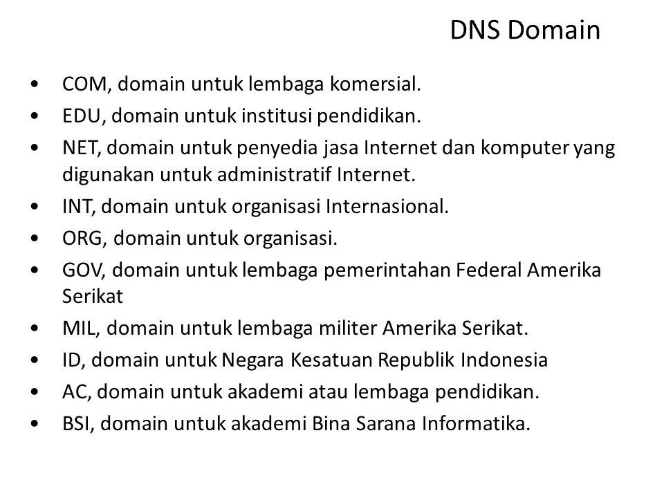 DNS Domain COM, domain untuk lembaga komersial.