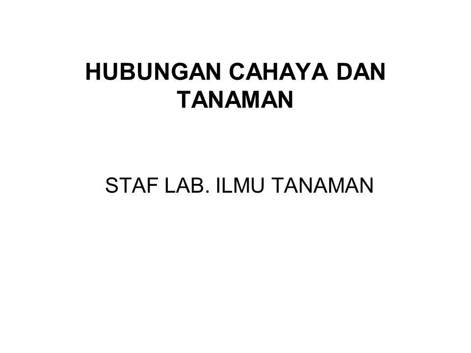 HUBUNGAN CAHAYA DAN TANAMAN