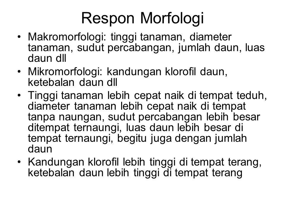 Respon Morfologi Makromorfologi: tinggi tanaman, diameter tanaman, sudut percabangan, jumlah daun, luas daun dll.