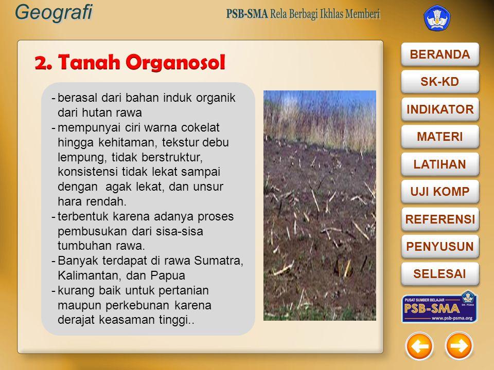 2. Tanah Organosol berasal dari bahan induk organik dari hutan rawa