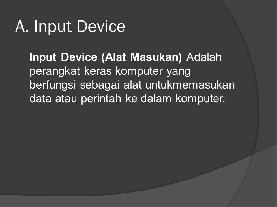 A. Input Device