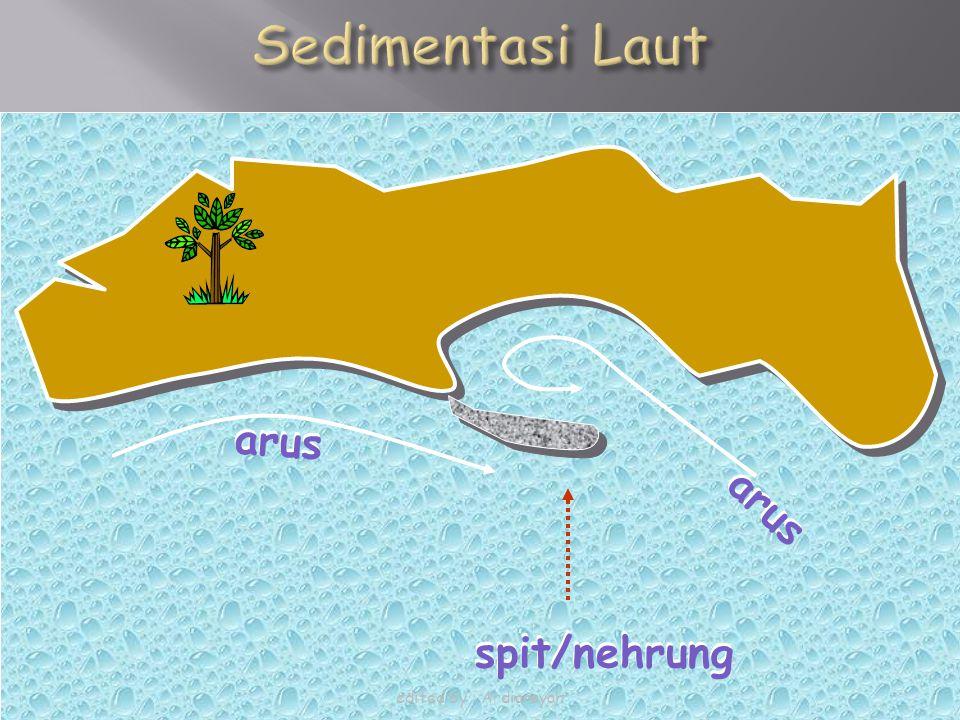 Sedimentasi Laut arus arus arus arus spit/nehrung spit/nehrung
