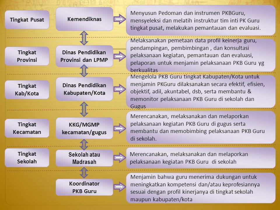Dinas Pendidikan Provinsi dan LPMP KKG/MGMP kecamatan/gugus