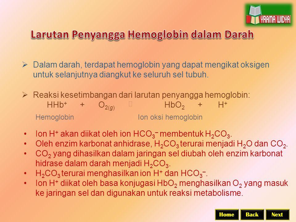 Larutan Penyangga Hemoglobin dalam Darah