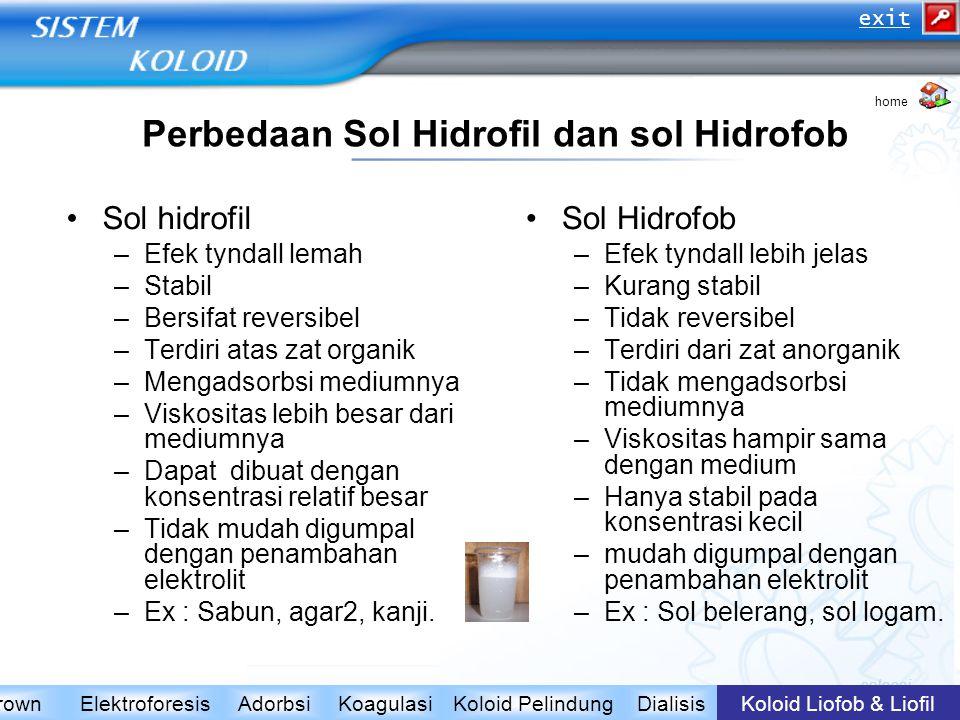 Perbedaan Sol Hidrofil dan sol Hidrofob