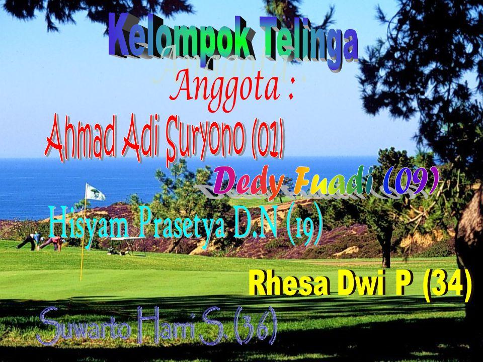 Kelompok Telinga Anggota : Ahmad Adi Suryono (01) Dedy Fuadi (09)