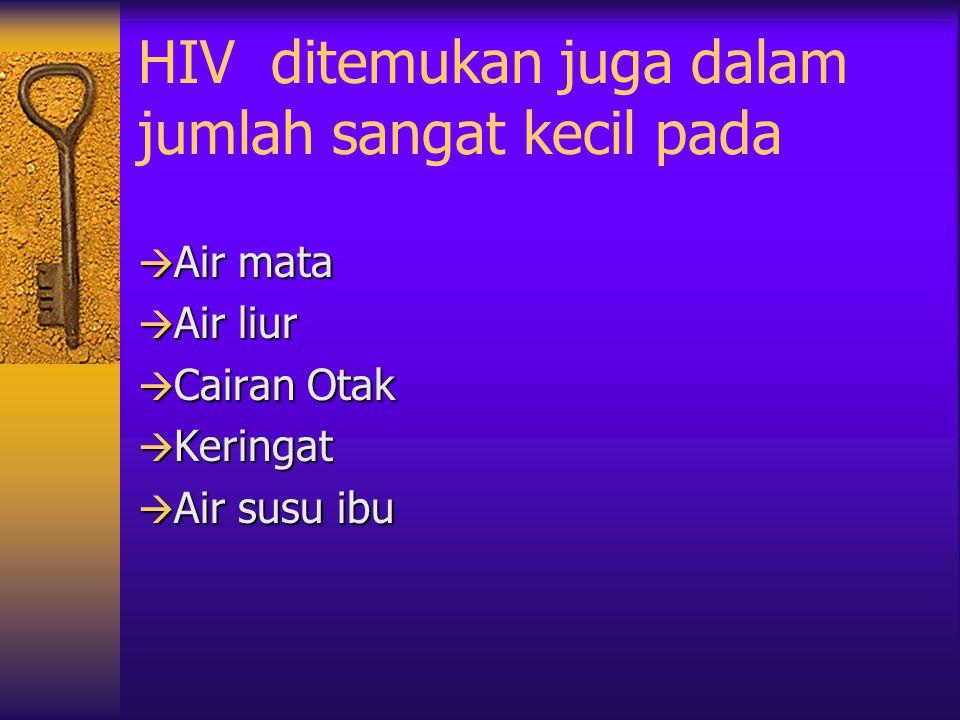 HIV ditemukan juga dalam jumlah sangat kecil pada