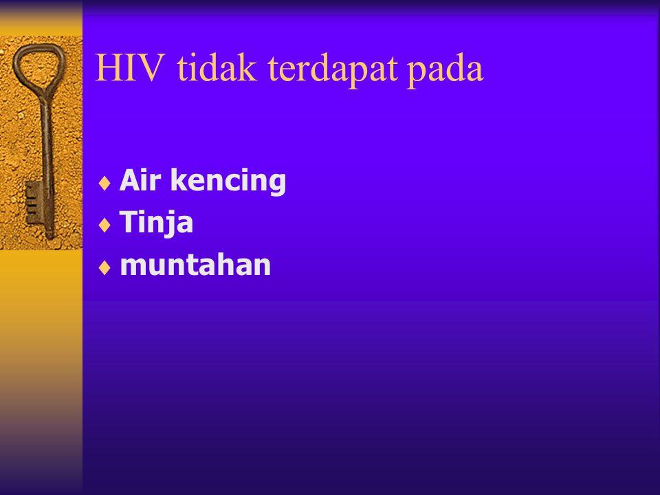 HIV tidak terdapat pada