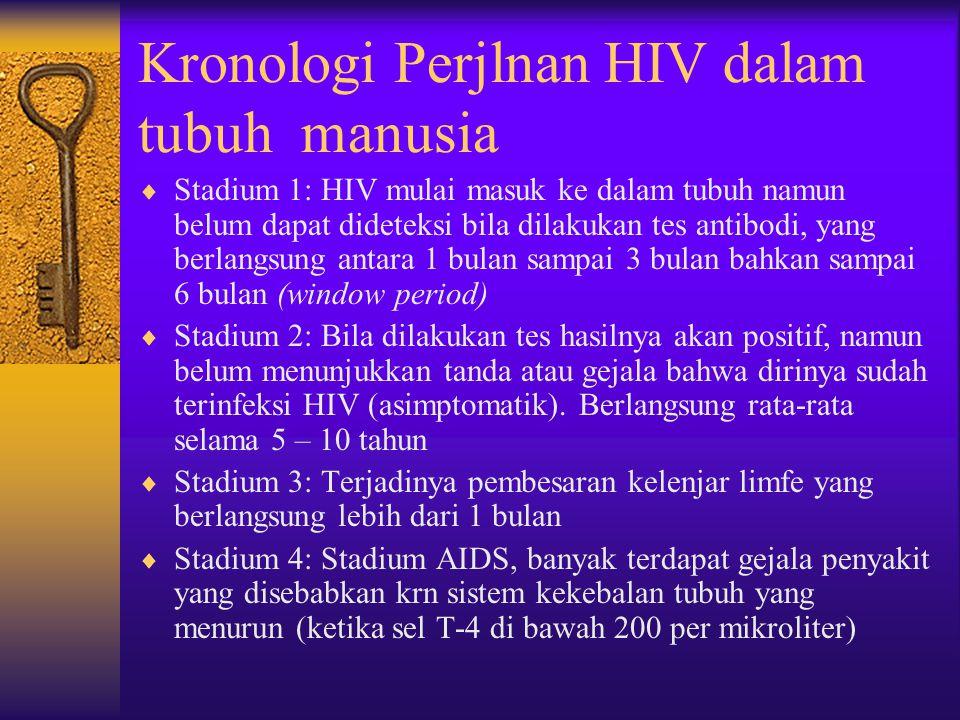 Kronologi Perjlnan HIV dalam tubuh manusia