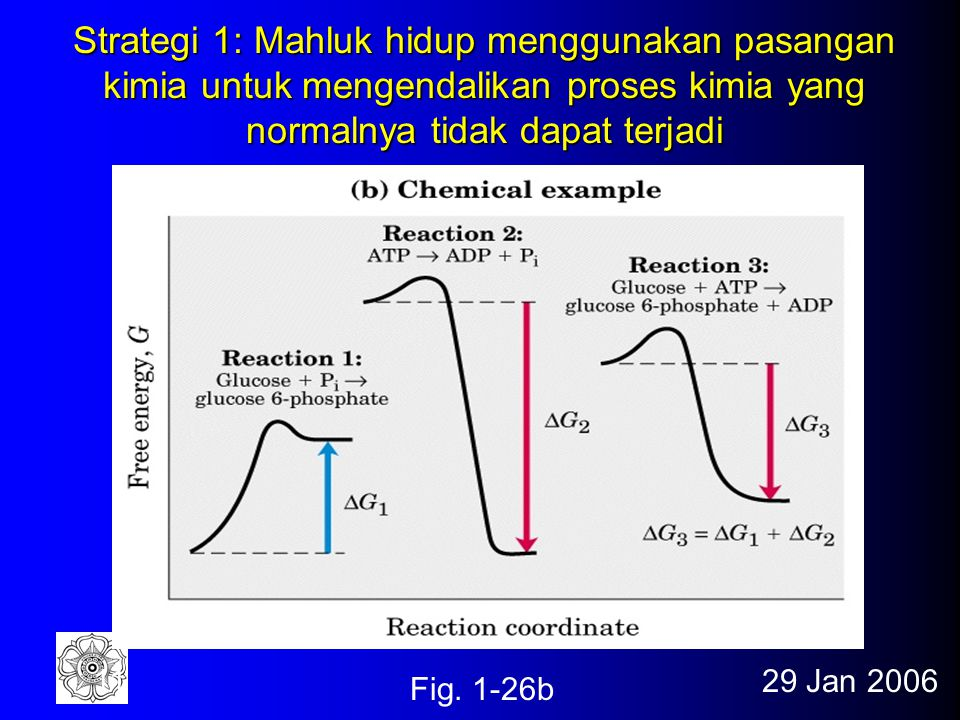 Strategi 1: Mahluk hidup menggunakan pasangan kimia untuk mengendalikan proses kimia yang normalnya tidak dapat terjadi
