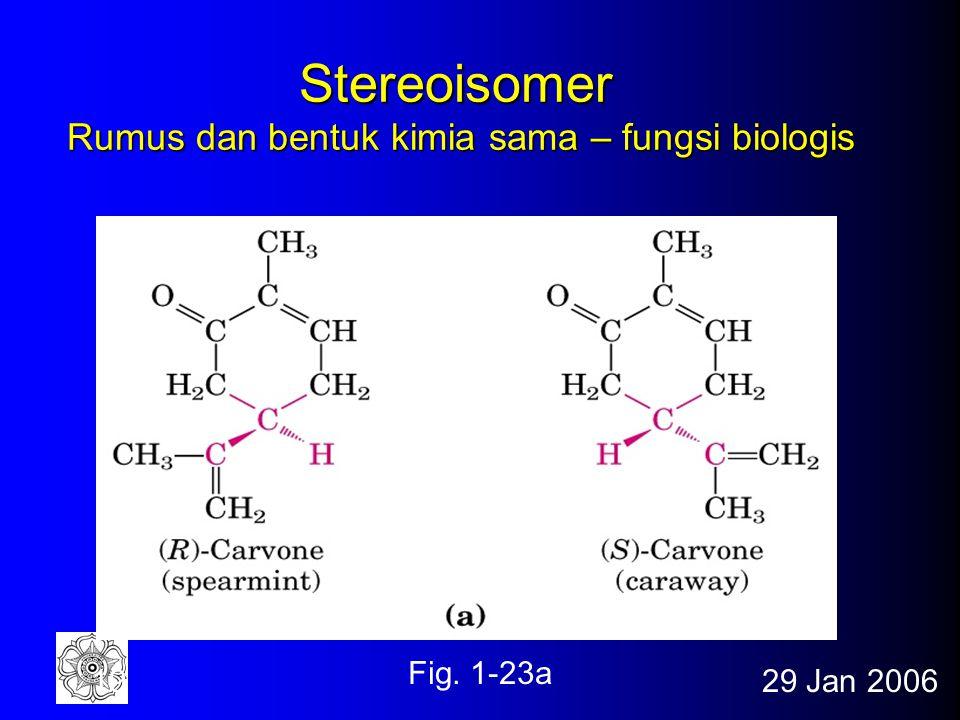 Stereoisomer Rumus dan bentuk kimia sama – fungsi biologis