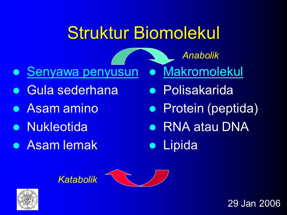 Struktur Biomolekul Senyawa penyusun Gula sederhana Asam amino