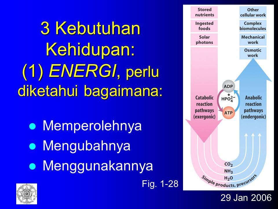 3 Kebutuhan Kehidupan: (1) ENERGI, perlu diketahui bagaimana:
