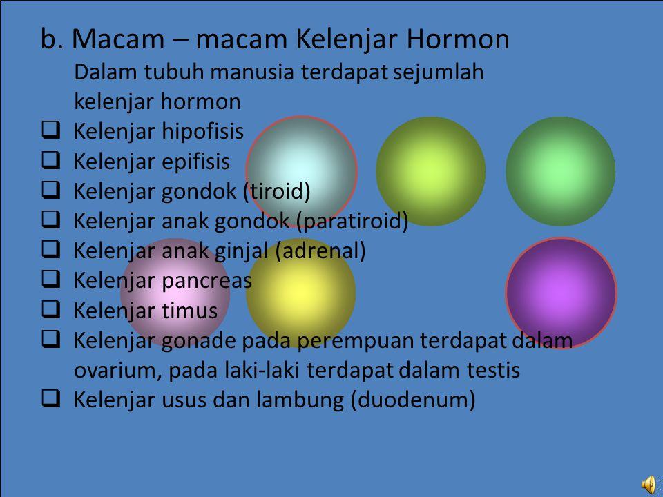 b. Macam – macam Kelenjar Hormon