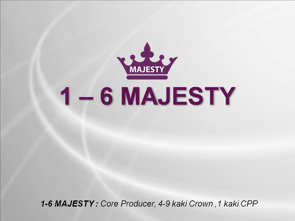 1-6 MAJESTY : Core Producer, 4-9 kaki Crown ,1 kaki CPP
