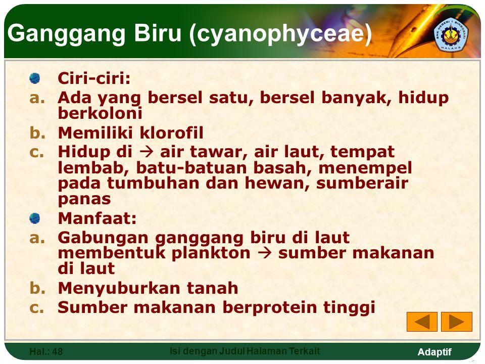 Ganggang Biru (cyanophyceae)