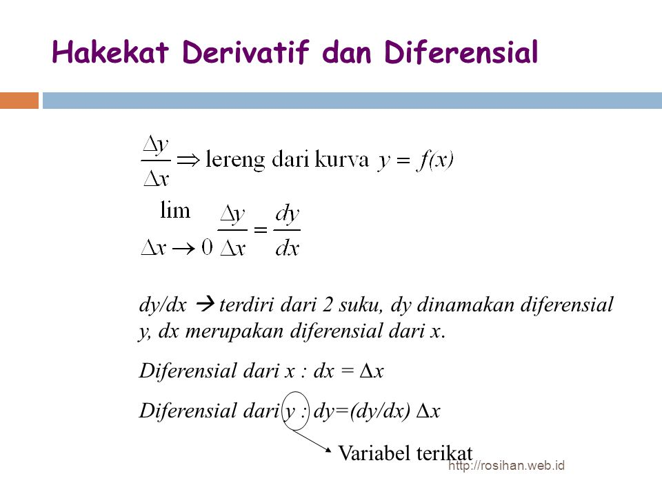 Hakekat Derivatif dan Diferensial
