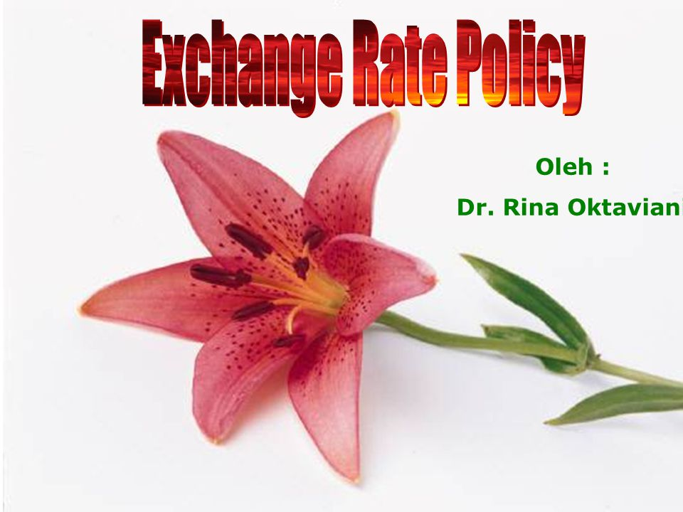Exchange Rate Policy Oleh : Dr. Rina Oktaviani