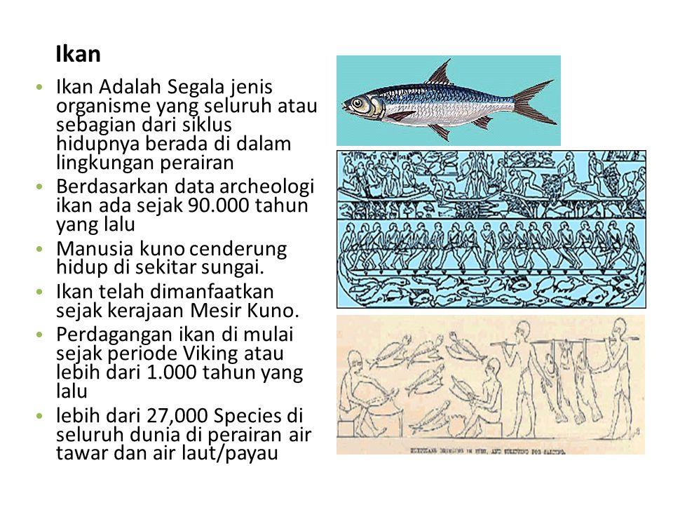 Ikan Ikan Adalah Segala jenis organisme yang seluruh atau sebagian dari siklus hidupnya berada di dalam lingkungan perairan.