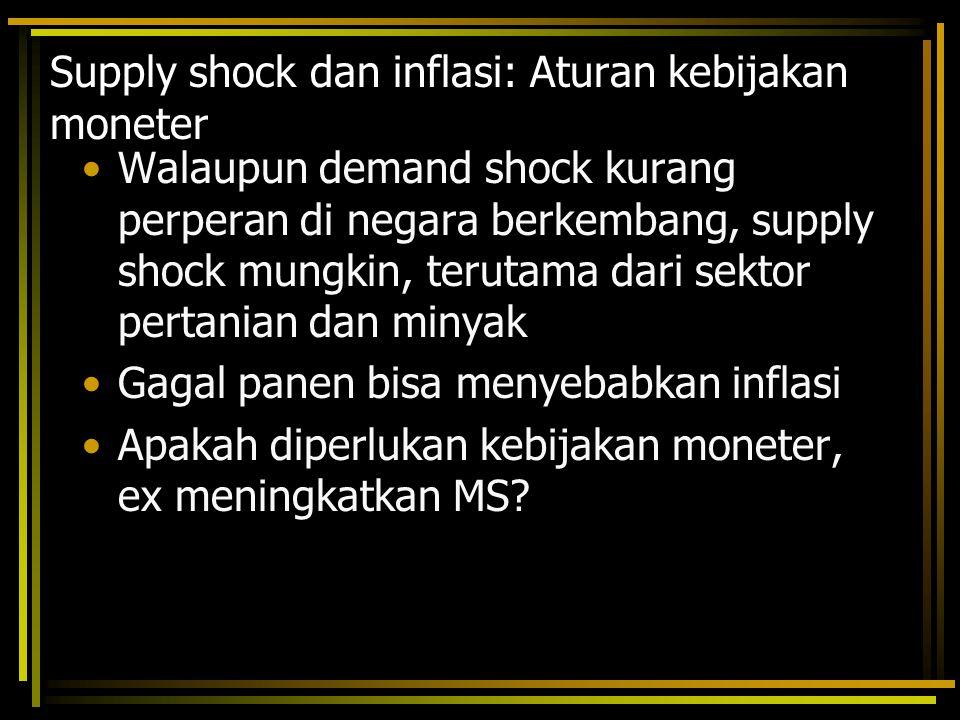 Supply shock dan inflasi: Aturan kebijakan moneter
