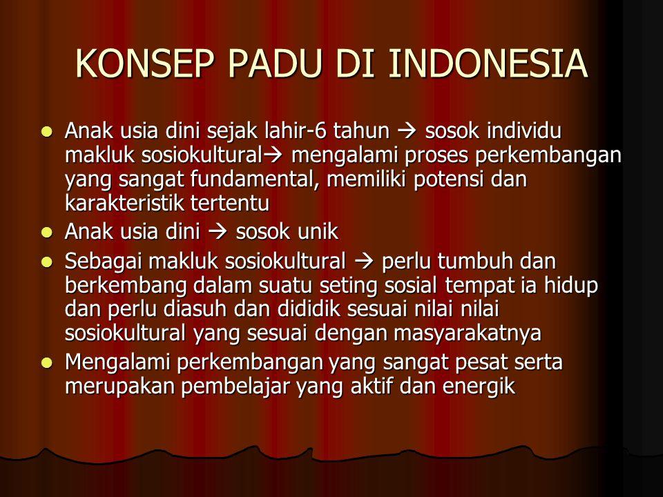KONSEP PADU DI INDONESIA