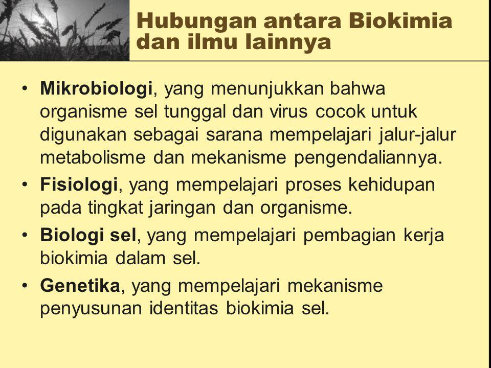 Hubungan antara Biokimia dan ilmu lainnya