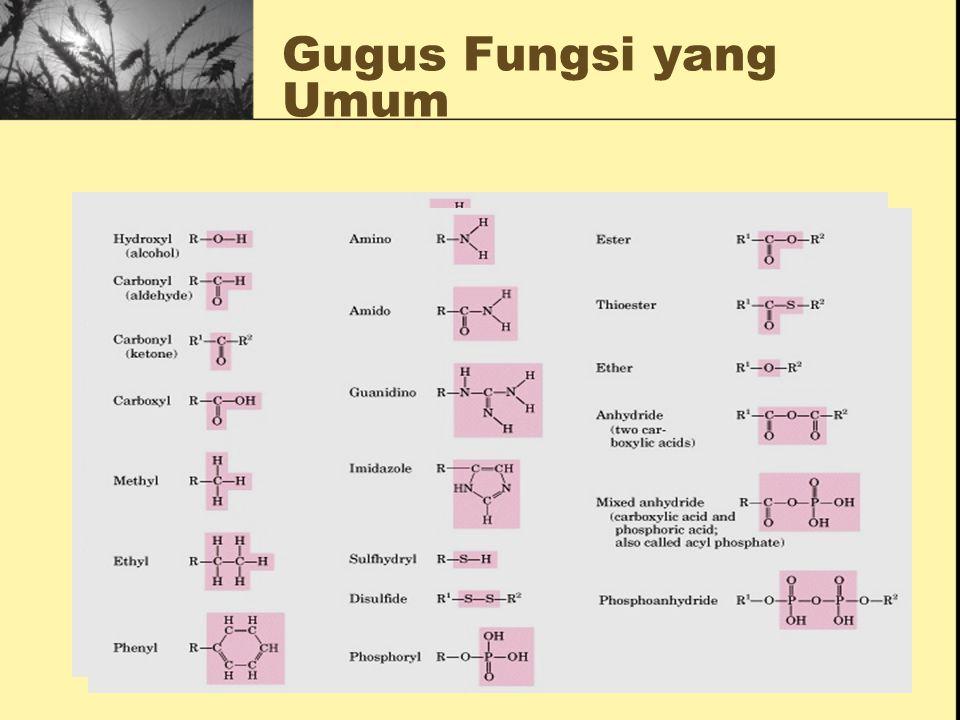 Gugus Fungsi yang Umum