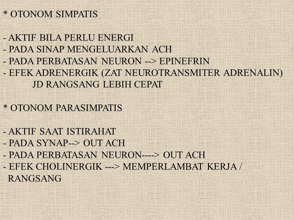 * OTONOM SIMPATIS - AKTIF BILA PERLU ENERGI. - PADA SINAP MENGELUARKAN ACH. - PADA PERBATASAN NEURON --> EPINEFRIN.