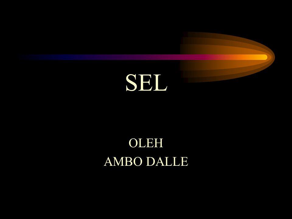 SEL OLEH AMBO DALLE